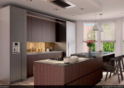 001_Aiden_Ammanuel-Woldab_Hub_Kitchen_Vew2.jpg